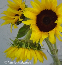 etsy33 sunflowers2