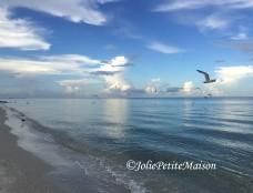 etsy41 beach birds1