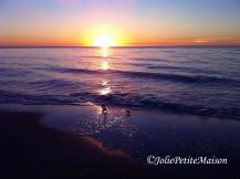 etsy49 beach birds sunset8