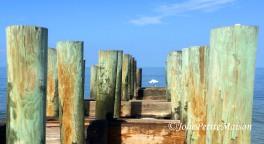 etsy54 beach bird pylon7