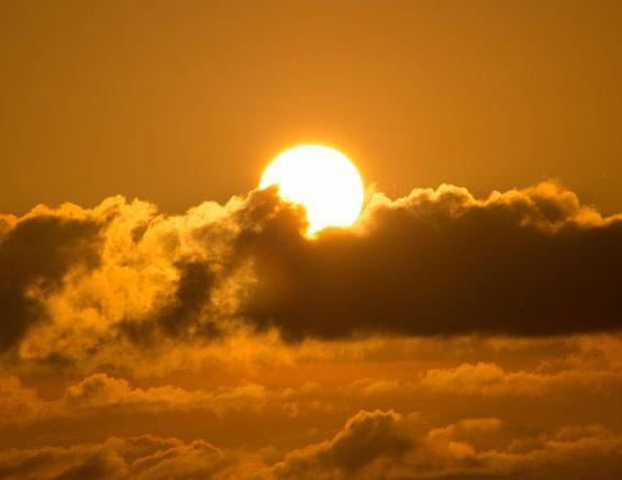 HR Golden Sunrise